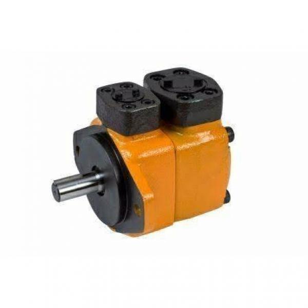 Yuken Hydraulic Vane Pump PV2R31- 76-25-R Double Vane Pump Rhomb Flange #1 image