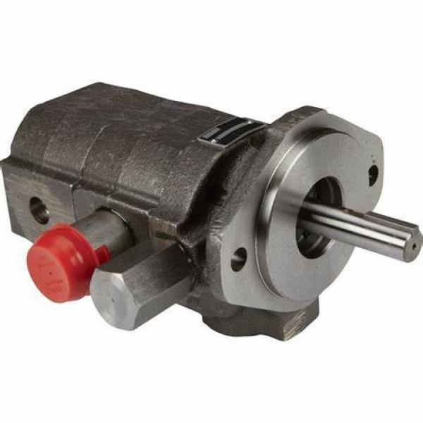 Parker F11 series F11-019 fixed displacement hydraulic motor #1 image