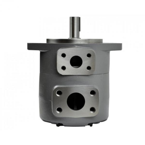 PV2r Single Vane Pump for Made in China #1 image
