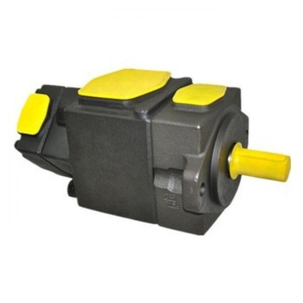 Blince Yuken PV2r1 PV2r2 PV2r3 PV2r12 PV2r23 PV2r13 Hydraulic Vane Pump #1 image