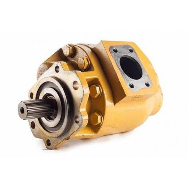 Parker hydraulic motor F11-019-MA-CN-K-000 LNG truck axial quantitative plunger pump - F11 small size shell series #1 image